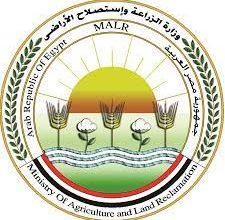 Photo of وزير الزراعة يعلن ارتفاع صادرات مصر الزراعية إلى حوالي 4.8 مليون طن حتى الان