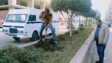 Photo of رفع كفاءة الجزيرة الوسطى بمنطقة شارع عبد السلام عارف