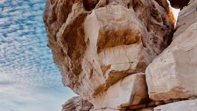"""Photo of في إطار خطة وزارة السياحة والآثار لتنشيط حركة السياحة الداخلية والترويج لمبادرة """"شتي في مصر"""""""