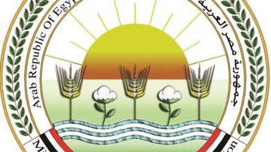 Photo of وزير الزراعة يكلف كافة اجهزة الوزارة بمتابعة آثار التقلبات المناخية على الانشطة الزراعية