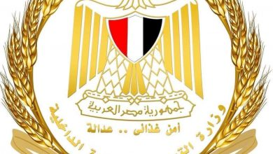 Photo of وزارة التموين … 2719 محلاً تجارياً مشاركة بالاوكازيون
