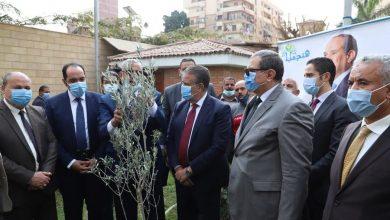"Photo of سعفان ومحافظ المنوفية يزرعان 1500 شجرة زيتون بديوان المحافظة ضمن مبادرة ""هنجملها"""