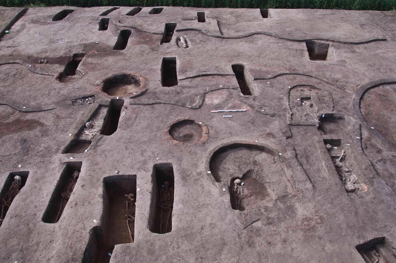 الكشف عن ١١٠ مقبرة بمنطقة كوم الخلجان بالدقهلية