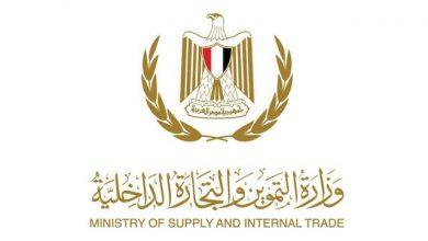 """Photo of """"وزير التموين"""" نسب توريد القمح وصلت الي 1.4 مليون طن قمح في الاسبوعين الماضيين للتوريد"""