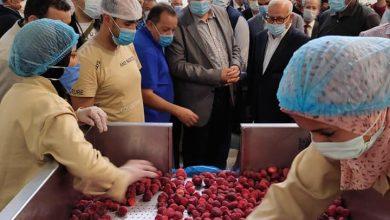 Photo of وزير الزراعة ومحافظ بورسعيد يتفقدان مصنع للأعلاف ومزرعة للإنتاح الحيواني والمجزر الآلي لبورسعيد
