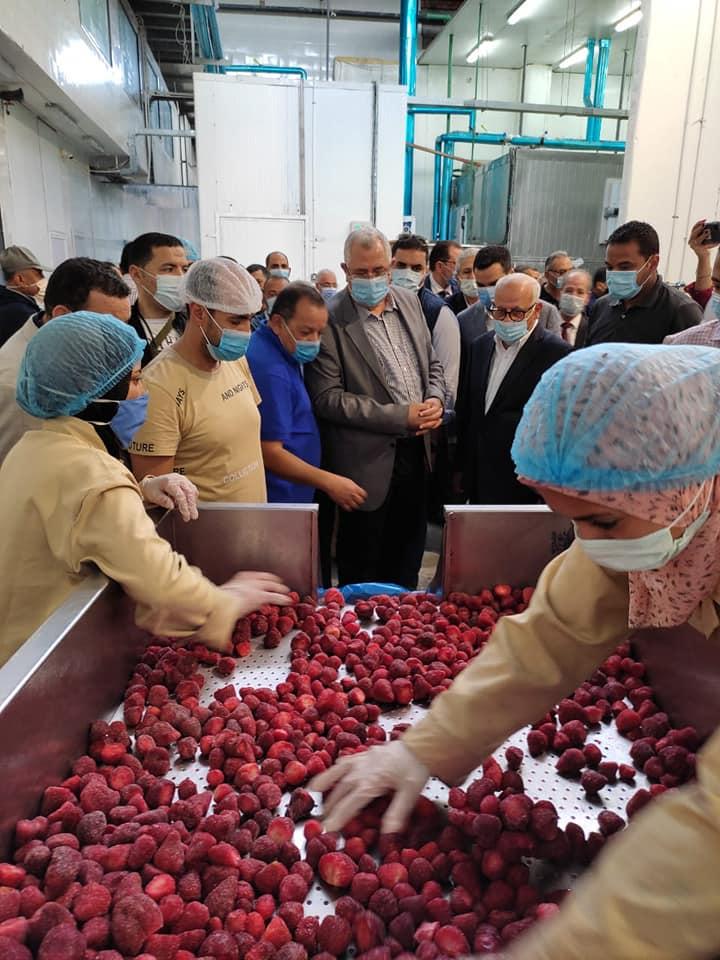 وزير الزراعة ومحافظ بورسعيد يتفقدان مصنع للأعلاف ومزرعة للإنتاح الحيواني والمجزر الآلي لبورسعيد