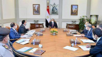 Photo of الرئيس يوجه بتعزيز جهود تطوير قطاع التعدين في مصر بالتكامل مع الرؤية الاستراتيجية التنموية للدولة