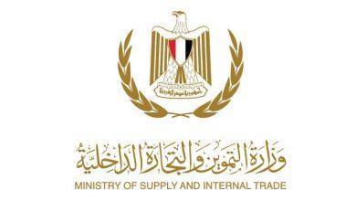 Photo of وزارة التموين: وصول نسب صرف السلع التموينية فى الأسبوع الاول من الشهر الي 35%