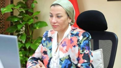 Photo of وزيرة البيئة تطلق مجموعة من الرسائل في اجتماع منصة الشراكة البيئية الأفريقية